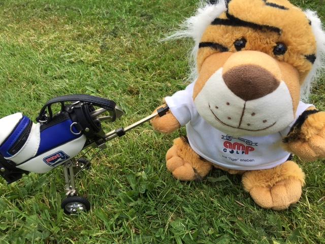 Herr Tiger testet die neue GAPR Eisen von Taylor Made