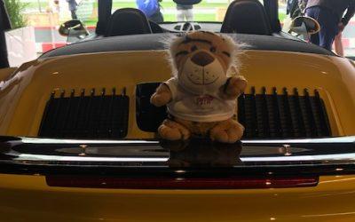Herr Tiger – golfen bei Hitze