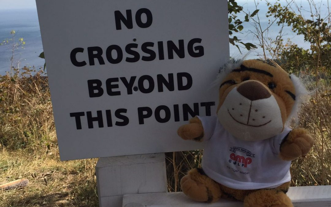 Herr Tiger erklärt in Kurzform das World Handicap System